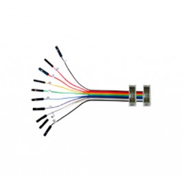 10-Pin Split Cable